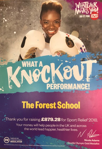 Img3704 sport relief 2018 donation poster